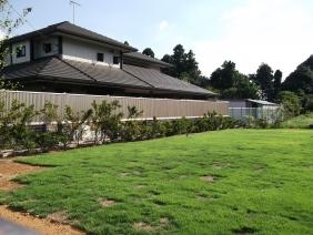広い芝生のお庭♪