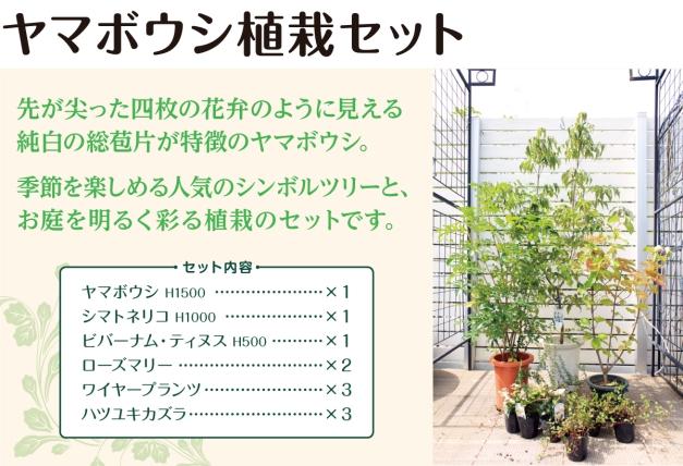 季節を楽しめる人気のシンボルツリー「ヤマボウシ」と、お庭を明るく彩る植栽のセットです。